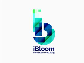 ibloom_final